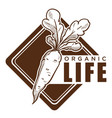 organic life healthy lifestyle vegetable diet icon vector image