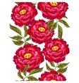 Seamless pattern with peony flowers Bright buds vector image vector image