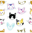 set cats a collection cartoon kittens of vector image vector image