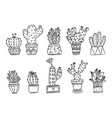 set of hand drawn cactus plants in pots vector image