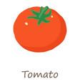 tomato icon isometric style vector image vector image