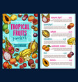 tropical fruits template vector image vector image
