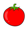 cartoon simple tomato isolated on white background vector image