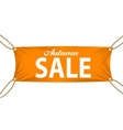 Textile banners with Autumn Sale Text Suspended by vector image