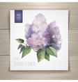 Watercolor flowers Lilac vector image