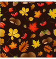 Autumnal seamless bacgground vector image vector image