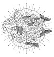 black and white drawing of three dolphins vector image