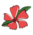 flower with petals red vector image