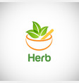 herb alternative medicine logo vector image
