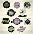 Set of vintage retro labels vector image vector image