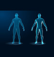 temlate set of human body 3d polygonal wireframe vector image