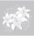 White lilies vector image