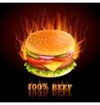 Beef Hamburger Background vector image