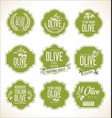 collections of olive oil labels 5 vector image vector image
