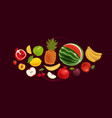 fruits banner greengrocery concept vector image vector image