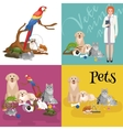 Group of pets and veterinary doctor with animals vector image