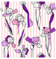 hand drawn iris vector image vector image