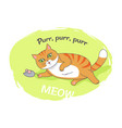 nice poster with funny kitten vector image vector image