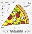 thin line icon pizza for web design vector image