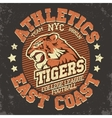 Angry Tiger Sport t-shirt graphics vector image vector image