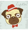 Hipster pug vector image