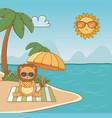 lion cartoon and summer season design vector image