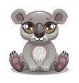 little cute cartoon koala bear icon vector image
