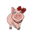 pig girl is a fashionista vector image