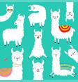alpaca llama big set childish bacollection vector image vector image