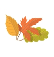 Autumn leaves cartoon icon vector image vector image