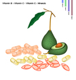 Avocado with Vitamin B C and Vitamin E vector image vector image