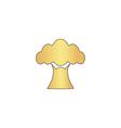 Baobab computer symbol vector image vector image