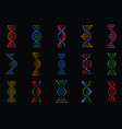 dna signs human chromosome genetic spiral vector image