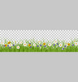 grass summer background vector image