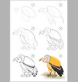 how to draw step step predatory vulture vector image vector image