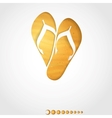 Summer Background Slipper vector image