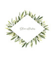 watercolor frame olive branches vector image