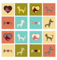 assembly flat icons dogs cats pets vector image vector image