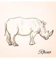 doodle rhino vector image vector image