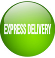 express delivery green round gel isolated push vector image vector image