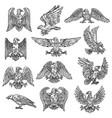 heraldic sketch gothic eagle hawk icons vector image vector image