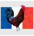 Polygonal gallic rooster on a french flag vector image
