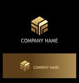 shape polygon technology gold logo vector image vector image