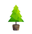 triangle tree fir in pot vector image vector image