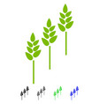 wheat plants flat icon