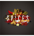 banner with spices seasonings and herbs for food vector image vector image
