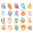 cartoon owl cute color owls forest birds and vector image