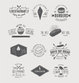 Design elements and badges vector image vector image