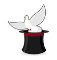 Dove and hat magician Black cylinder and a white vector image vector image