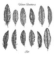 hand drawn feathers set isolated on white vector image